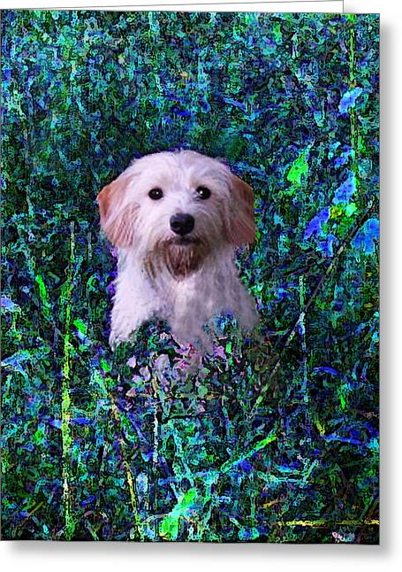 Lost In The Paint Greeting Card by Brandy Nicole Neal