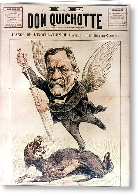 Vaccination Greeting Cards - Louis Pasteur (1822-1895) Greeting Card by Granger