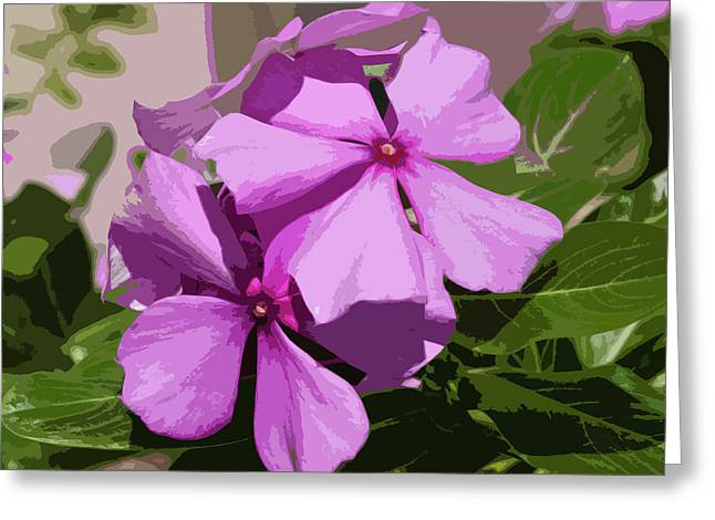 Pleno Greeting Cards - Madagascar Rosy Periwinkle Greeting Card by Allan  Hughes