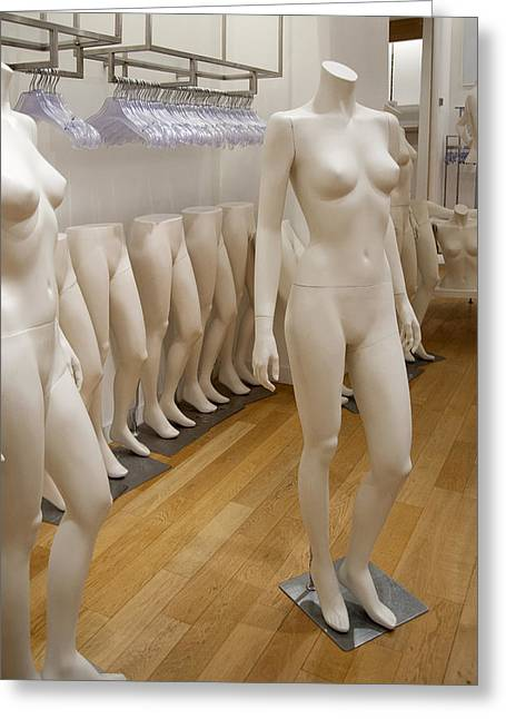 Dressmakers Model Greeting Cards - Mannequins Greeting Card by Marlene Ford