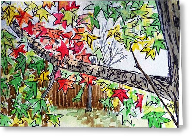 Sketch Book Greeting Cards - Maple Tree Sketchbook Project Down My Street Greeting Card by Irina Sztukowski