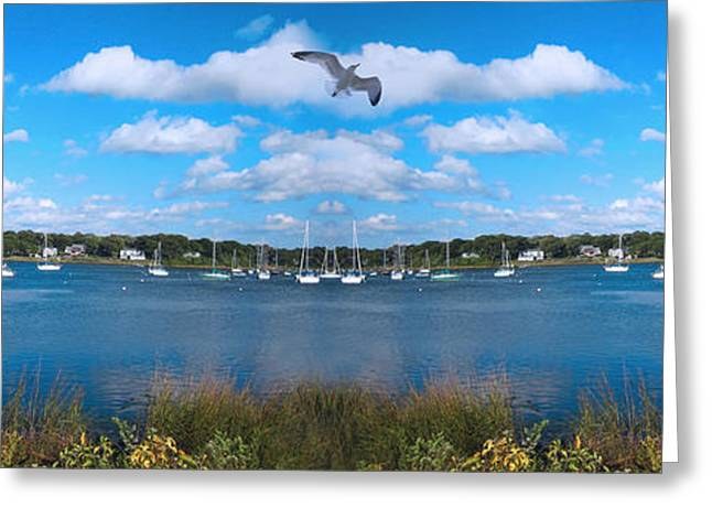 Flying Seagull Greeting Cards - Marina Greeting Card by Lourry Legarde