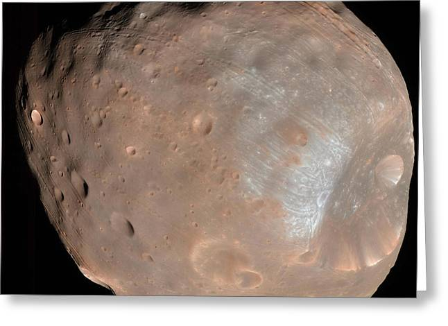 Phobos Greeting Cards - Mars Moon Phobos Greeting Card by Stocktrek Images