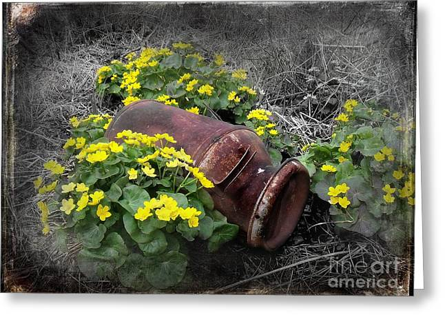 Marshes Digital Greeting Cards - Marsh Marigolds Greeting Card by The Stone Age