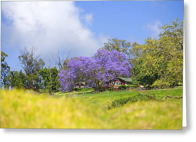 Country Cottage Greeting Cards - Maui Upcountry Greeting Card by Ron Dahlquist - Printscapes