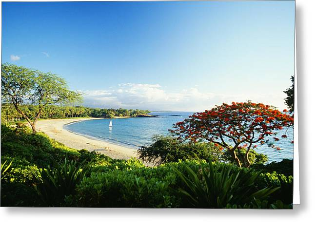 Location Art Greeting Cards - Mauna Kea Beach Greeting Card by Peter French - Printscapes