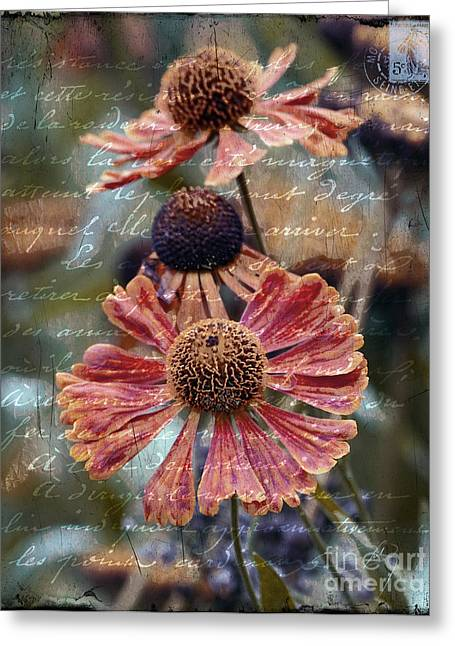Written French Greeting Cards - Memories Greeting Card by Karen Lewis