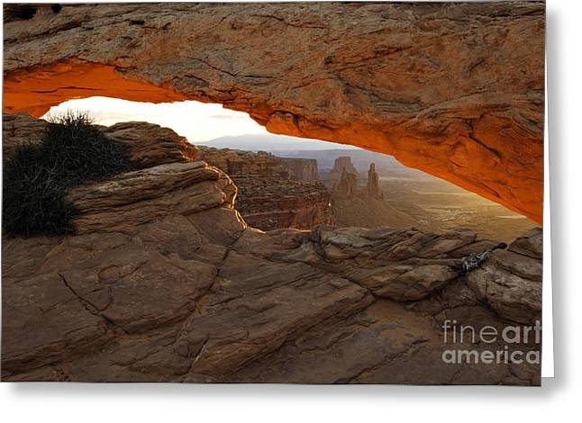 U.s. Open Greeting Cards - Mesa Arch Sunrise - D003097 Greeting Card by Daniel Dempster
