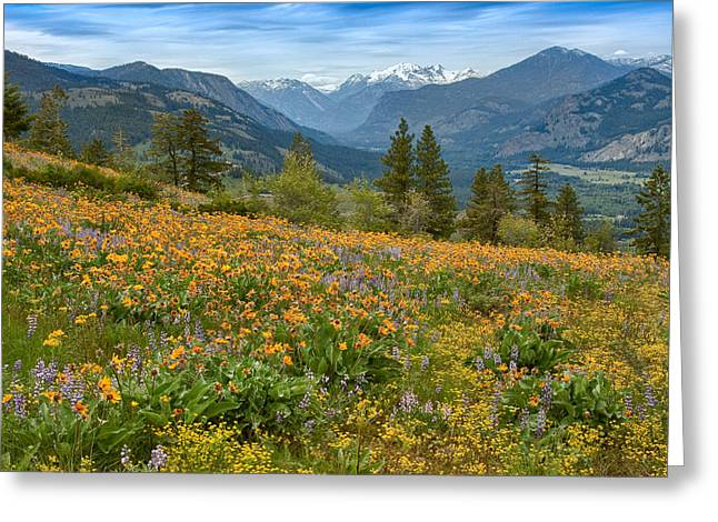 Methow Greeting Cards - Methow Valley Spring Greeting Card by Bill Johnson