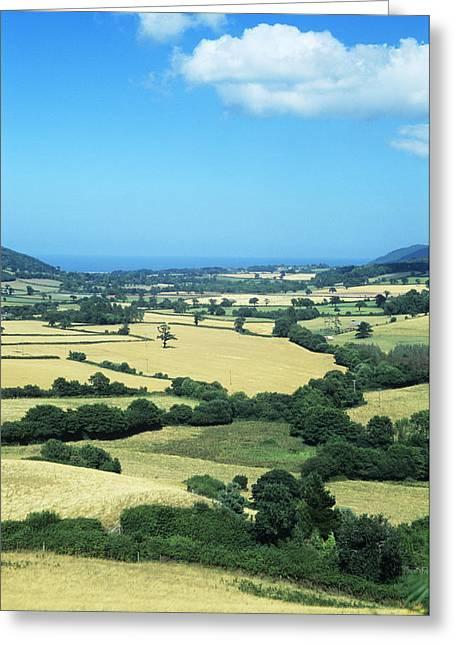 Mixed Farmland Greeting Card by David Aubrey