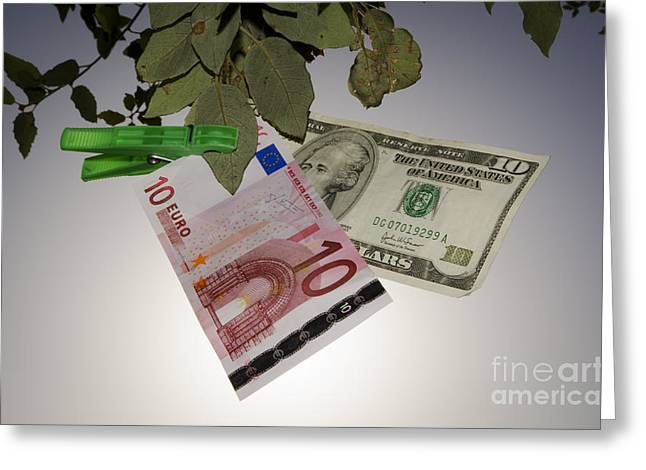Money Hanging In A Tree Greeting Card by Mats Silvan