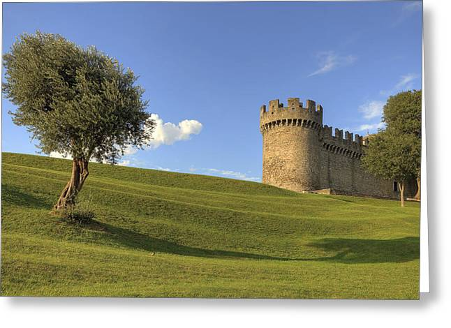 Olive Garden Greeting Cards - Montebello - Bellinzona Greeting Card by Joana Kruse