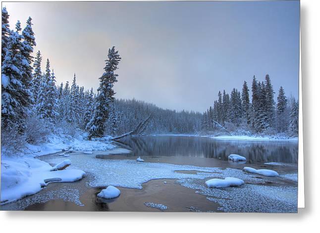 Morley Greeting Cards - Morley River In Winter Near Teslin Greeting Card by Robert Postma