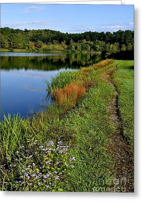 Allegheny Greeting Cards - Morning Big Ditch Lake Greeting Card by Thomas R Fletcher