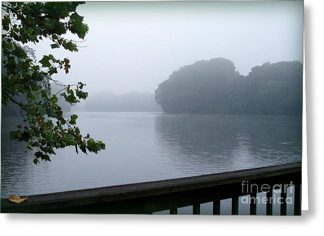 Morning Mist Greeting Card by Gladys Steele