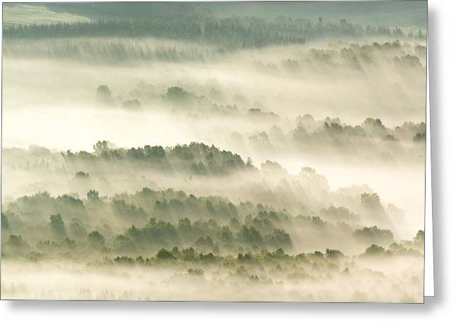 Morning Mist Over Farmland Greeting Card by Duncan Shaw