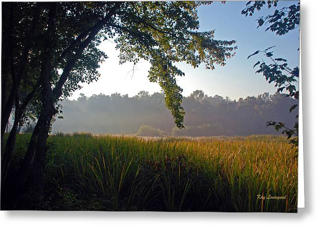 Kay Lovingood Greeting Cards - Morning on the River Greeting Card by Kay Lovingood
