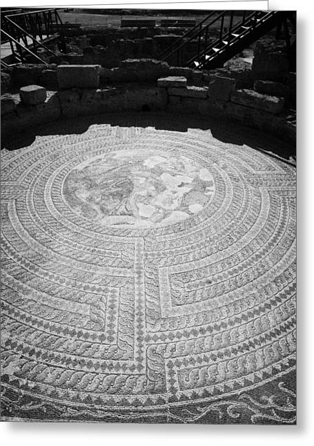 Pafos Greeting Cards - Mosaics On The Floor Of The House Of Theseus Roman Villa At Paphos Archeological Park Cyprus Greeting Card by Joe Fox