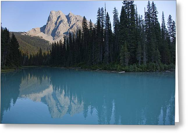 Canadian Greeting Cards - Mount Burgess Reflects In An Alpine Greeting Card by Taylor S. Kennedy