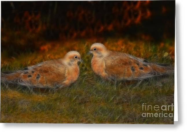 Mourning Dove Greeting Cards - Mourning Doves  Greeting Card by Marjorie Imbeau