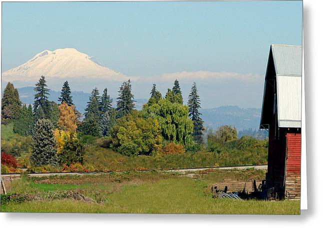 Old Barn Pen And Ink Greeting Cards - Mt. Adams In The Country Greeting Card by Athena Mckinzie