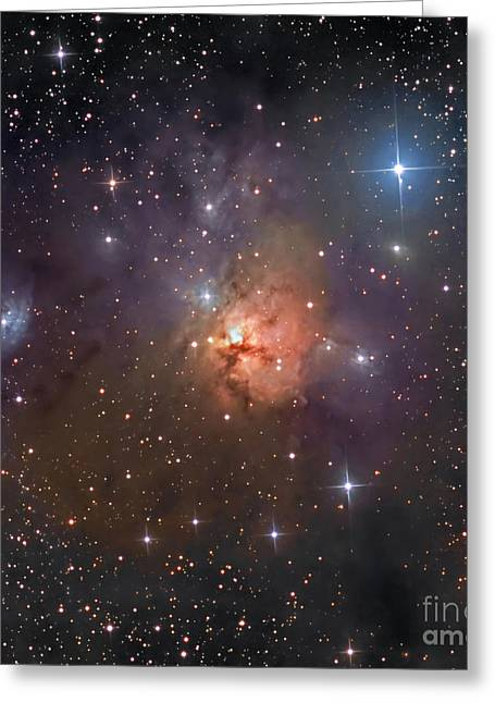 Twinkle Greeting Cards - Ngc 1579, The Northern Trifid Nebula Greeting Card by Don Goldman