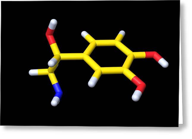 Noradrenaline Greeting Cards - Noradrenaline Molecule Greeting Card by Dr Tim Evans