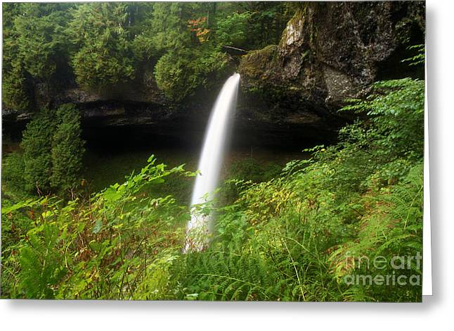 Silver Falls Greeting Cards - North Falls Canyon Greeting Card by Adam Jewell