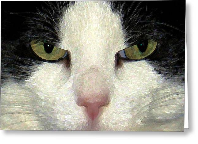 Humorous Greeting Cards Digital Art Greeting Cards - Not Amused Greeting Card by Dale   Ford