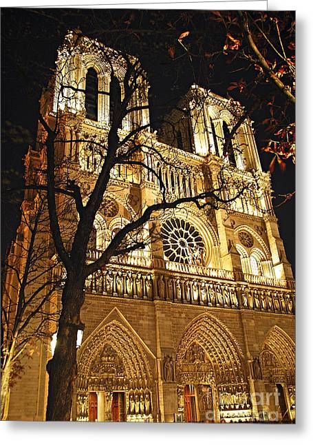 Stones Greeting Cards - Notre Dame de Paris Greeting Card by Elena Elisseeva