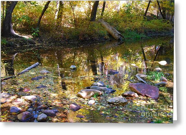 West Fork Greeting Cards - Oak Creek Reflection Greeting Card by Tam Ryan