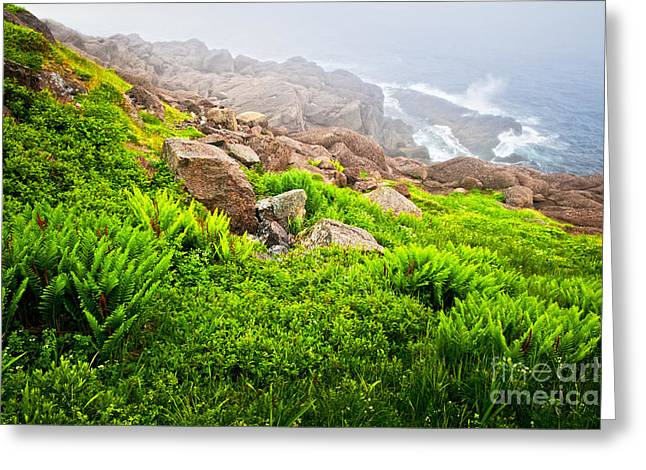 Foggy Ocean Greeting Cards - Ocean below Greeting Card by Elena Elisseeva