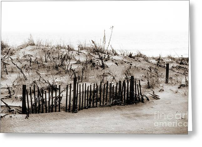 Snow. Ocean Greeting Cards - Ocean Grove Dunes Greeting Card by John Rizzuto