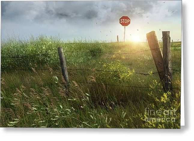 Breezy Greeting Cards - Old country fence on the prairies Greeting Card by Sandra Cunningham
