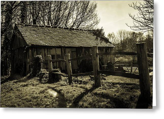 Shed Greeting Cards - Old Fashioned Shed Greeting Card by Dawn OConnor
