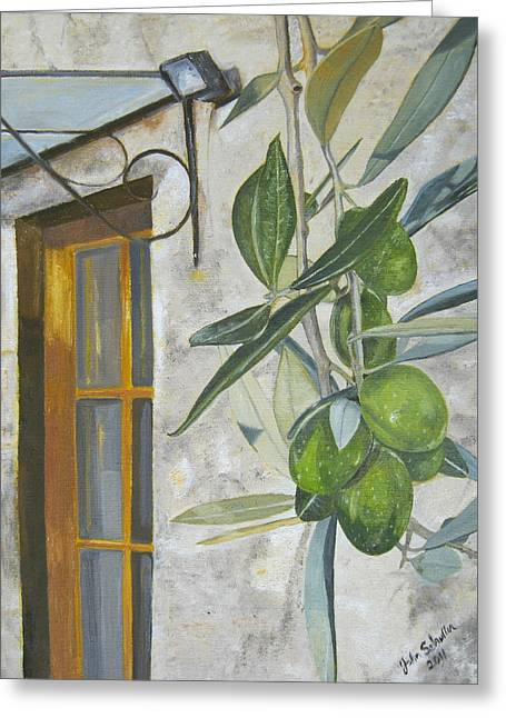 John Schuller Greeting Cards - Olives in Tuscany Greeting Card by John Schuller