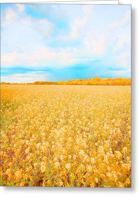 On A Clear Day Greeting Card by Bonnie Bruno