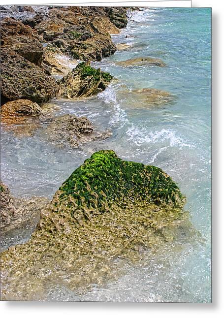 California Beach Art Greeting Cards - On the Rocks Greeting Card by Shari Jardina