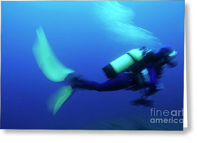 Scuba Diving Greeting Cards - One scuba diver swimming underwater Greeting Card by Sami Sarkis