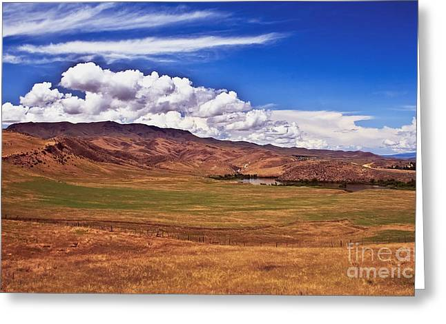 Landsacape Greeting Cards - Open Range Greeting Card by Robert Bales