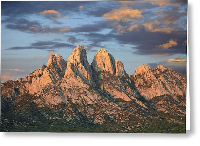 Mountain Peak Greeting Cards - Organ Mountains Near Las Cruces New Greeting Card by Tim Fitzharris