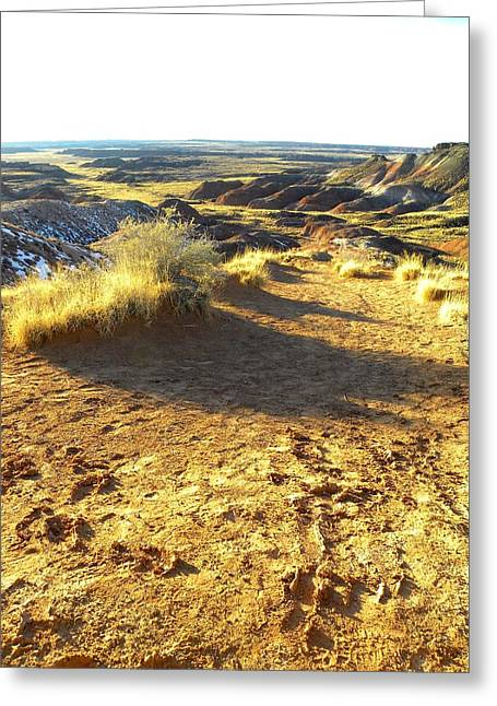 Universities Glass Art Greeting Cards - Painted Desert 2 Greeting Card by Patricia Bigelow