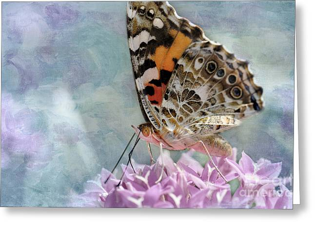 Painted Lady Butterfly Greeting Card by Betty LaRue