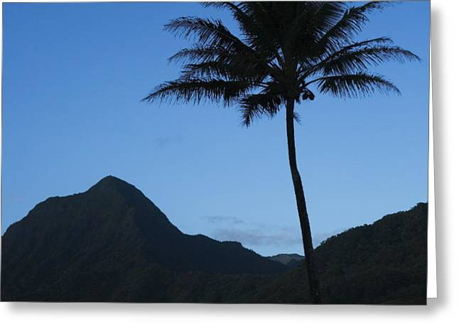 Palm and Blue Sky Greeting Card by Dana Edmunds - Printscapes
