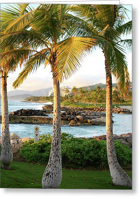 Ko Olina Lagoon Greeting Cards - Palm Trees 2 Greeting Card by Eddie Freeman
