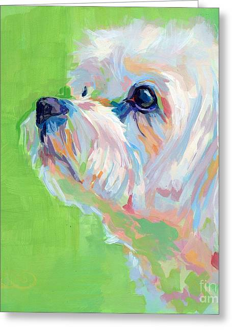 Maltese Dogs Greeting Cards - Parker Greeting Card by Kimberly Santini