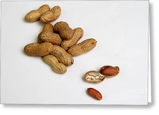 Allergic Greeting Cards - Peanuts Greeting Card by Photo Researchers, Inc.
