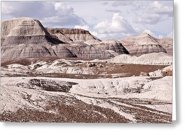 Paint It Greeting Cards - Petrified Forest National Park Greeting Card by Melany Sarafis