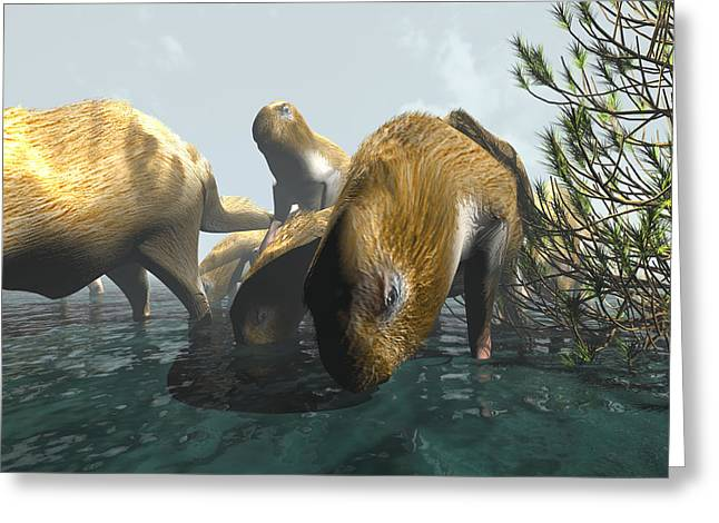 Aquatic Greeting Cards - Phoberomys Pattersoni, Prehistoric Rodent Greeting Card by Christian Darkin