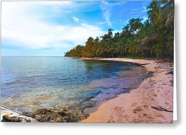 Ocean Vista Greeting Cards - Playa Cocles - Costa Rica Greeting Card by Henry Rowland